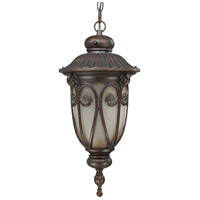 Nuvo Lighting Corniche 1 Light Outdoor Hanging Lantern with Photocell in Burlwood 60/3928