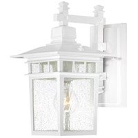 Cove Neck 1 Light 12 inch White Outdoor Wall Lantern