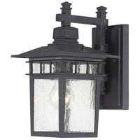 Cove Neck 1 Light 12 inch Textured Black Outdoor Wall Lantern