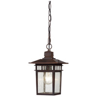 Cove Neck 1 Light 7 inch Rustic Bronze Outdoor Hanging Lantern