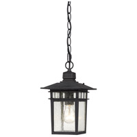 Nuvo Lighting Cove Neck 1 Light Outdoor Hanging Lantern in Textured Black 60/4956
