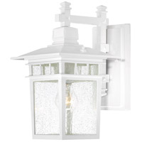 Nuvo Lighting Cove Neck 1 Light Outdoor Wall Light in White 60/4957