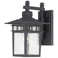 Cove Neck 1 Light 14 inch Textured Black Outdoor Wall Light