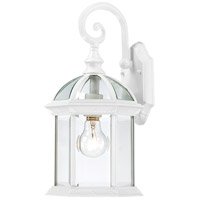 Boxwood 1 Light 16 inch White Outdoor Wall Lantern