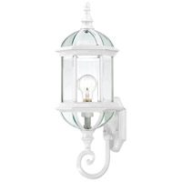 Nuvo Lighting Boxwood 1 Light Outdoor Wall Lantern in White 60/4971