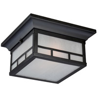 Nuvo 60/5606 Drexel 2 Light 11 inch Stone Black Outdoor Flush Mount