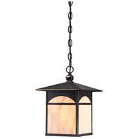 Canyon 1 Light 9 inch Umber Bronze Outdoor Hanging Lantern