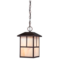 Nuvo Tanner 1 Light Outdoor Hanging Lantern in Claret Bronze 60/5674