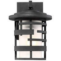 Lansing 1 Light 10 inch Textured Black Outdoor Wall Mount