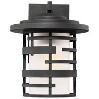Lansing 1 Light 11 inch Textured Black Outdoor Wall Mount
