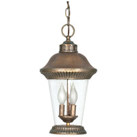 Nuvo Lighting Clarion 3 Light Outdoor Hanging in Platinum Gold 60/969