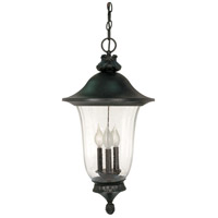Parisian 3 Light 13 inch Textured Black Outdoor Hanging Lantern