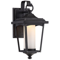 Essex LED 14 inch Sterling Black Outdoor Wall Light