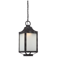 Winthrop LED 8 inch Iron Black Outdoor Hanging Lantern