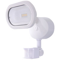 Signature LED 9 inch White Security Light, with Motion Sensor