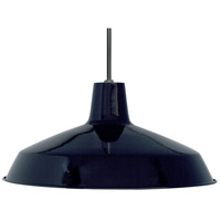 Nuvo Lighting Warehouse Glass 1 Light Pendant in Black 76/284