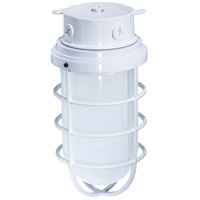 Nuvo Lighting Industrial Style 1 Light Outdoor Ceiling Mount in White 76/618