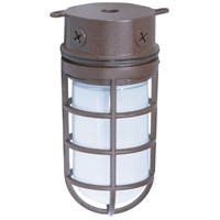 Nuvo Lighting Industrial Style 1 Light Outdoor Ceiling Mount in Old Bronze 76/625