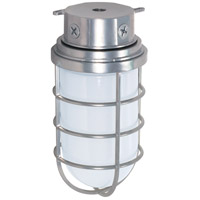 Industrial Style 1 Light 6 inch Metallic Silver Outdoor Ceiling Mount