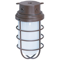 Industrial Style 1 Light 6 inch Old Bronze Outdoor Ceiling Mount