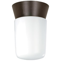 Nuvo Lighting Signature 1 Light Outdoor Ceiling Mount in Bronzotic 77/156