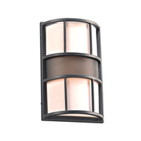 Larissa 1 Light 14 inch Bronze Outdoor Wall Light in Fluorescent