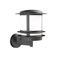 Tusk 1 Light 12 inch Black Outdoor Wall Light in Incandescent