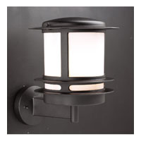 PLC Lighting Tusk Outdoor Wall Sconce in Black with Black Glass 1894/CFL-BK