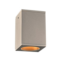 Dominick LED 7 inch Silver Outdoor Wall Light
