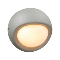Sol 1 Light 8 inch Silver Outdoor Wall Light in Incandescent