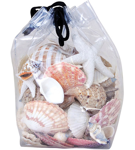 Pomeroy 002366 Shell Natural Decorative Shells photo