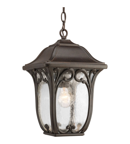 Progress Lighting Enchant 1 Light Outdoor Hanging Lantern in Espresso P6501-84 photo