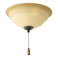 Torino 3 Light Forged Bronze Fan Light Kit in Tea-Stained
