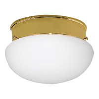 Fitter 1 Light 8 inch Polished Brass Close-to-Ceiling Ceiling Light in Bulbs Not Included