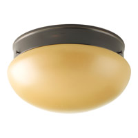Progress Lighting Fitter 2 Light Close-to-Ceiling in Antique Bronze P3412-20T