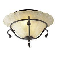 Progress Lighting Timberbrook 2 Light Semi-Flush Mount in Espresso P3415-84