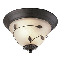 Progress Lighting Eden 2 Light Close-to-Ceiling in Forged Bronze P3438-77