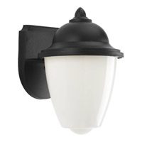 Signature LED 9 inch Black Outdoor Wall Lantern
