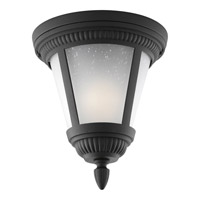 Westport 1 Light 9 inch Black Outdoor Close-to-Ceiling Lantern in Bulbs Included, Etched Seeded