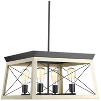 Briarwood 4 Light 20 inch Graphite Chandelier Ceiling Light