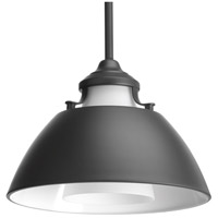 Carbon 1 Light 11 inch Graphite Pendant Ceiling Light