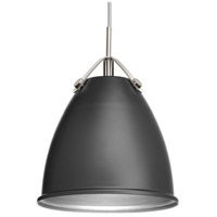 Tre 1 Light 10 inch Graphite Pendant Ceiling Light