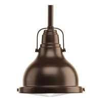 Progress Fresnel Lens 1 Light Pendant in Oil Rubbed Bronze P5050-10830K9