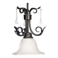Progress Lighting Veranda 1 Light Mini-Pendant in Espresso P5060-84
