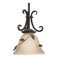 Progress Lighting Eden 1 Light Mini-Pendant in Forged Bronze P5077-77