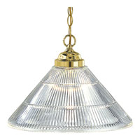 Progress Lighting Prismatic Glass 1 Light Pendant in Polished Brass P5093-10
