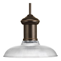 Brookside 1 Light 12 inch Antique Bronze Pendant Ceiling Light