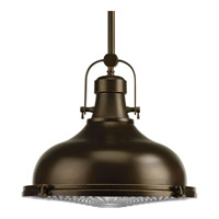 Fresnel Lens LED 16 inch Oil Rubbed Bronze Pendant Ceiling Light