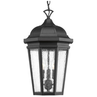 Progress P550002-031 Verdae 3 Light 10 inch Black Outdoor Hanging Lantern Design Series