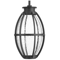 Pier 33 LED 8 inch Black Outdoor Hanging Lantern